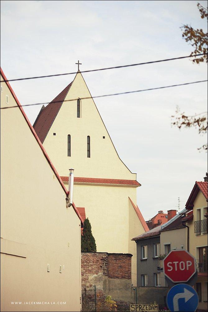 fotografia slubna slask marzenamike 14 - Willa Słoneczna - MARZENA & MIKE